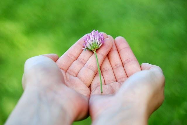 memberi dan menerima