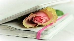 puisi dan kehidupan